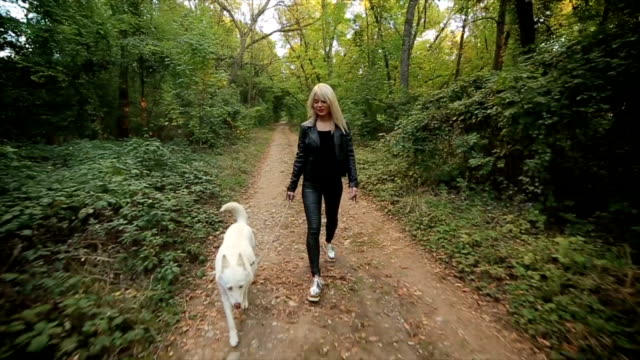 Mädchen zu Fuß Hund im park
