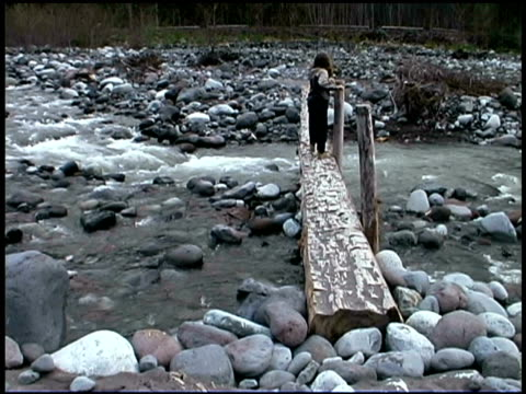 girl walking on bridge - mt rainier national park stock videos & royalty-free footage