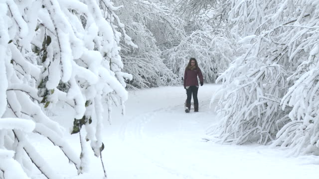 MS Girl walking through complete snow coverd forest with sled / Saarburg, Rhineland-Palatinate, Germany