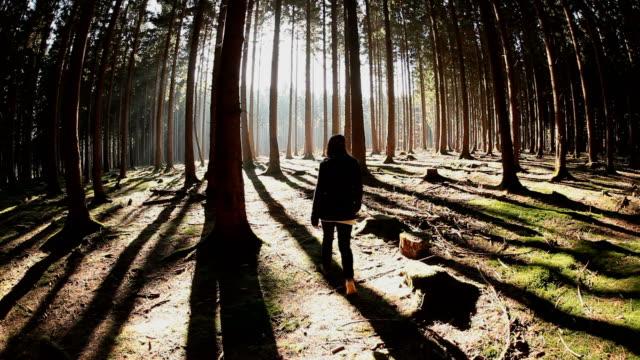 WS Girl walking through fir forest  /  Kastel-Staadt, Rhineland-Palatinate, Germany