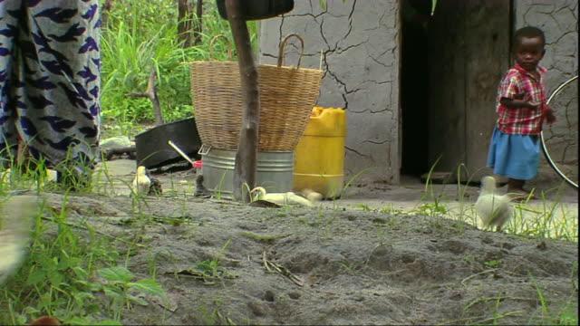 ms girl walking towards chicken bucket / mpika, zambia - zambia stock videos & royalty-free footage