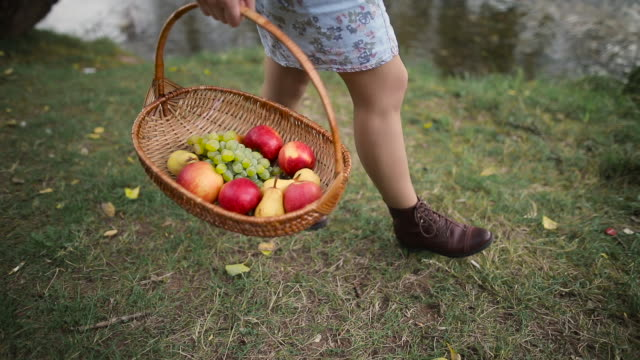 girl walking with fruit basket - collection stock videos & royalty-free footage