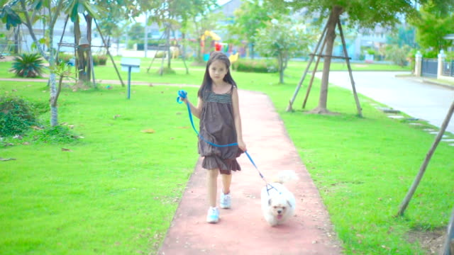 A girl walking with the dog on the walkway in the park.