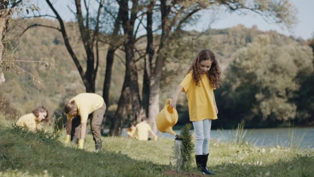 vídeos de stock e filmes b-roll de girl watering a plant - pequeno