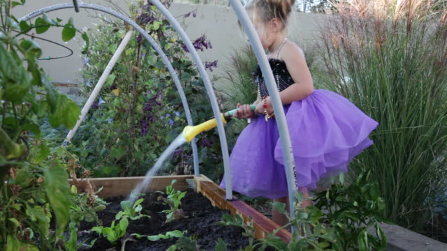 ms pan girl watering in garden with dress / lamy, new mexico, usa - lamy new mexico stock videos and b-roll footage