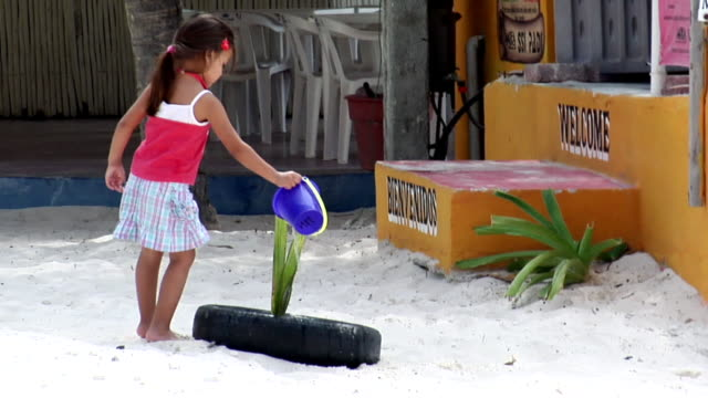 ws girl (2-3) watering plant in backyard, isla mujeres, quintana roo, mexico - 注ぎ口点の映像素材/bロール
