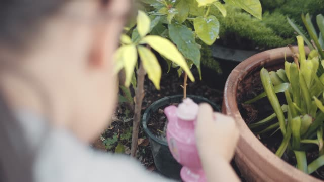 girl watering plants in the garden - watering can stock videos & royalty-free footage