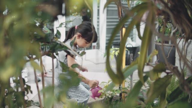 vídeos de stock e filmes b-roll de girl watering plants in the garden - plantar