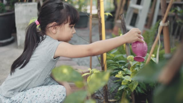girl watering plants in the garden - watering stock videos & royalty-free footage