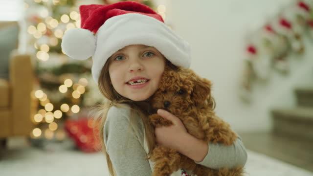 girl wearing santa hat hugging dog who is licking her cheek on christmas / vineyard, utah, united states - santa hat stock videos & royalty-free footage