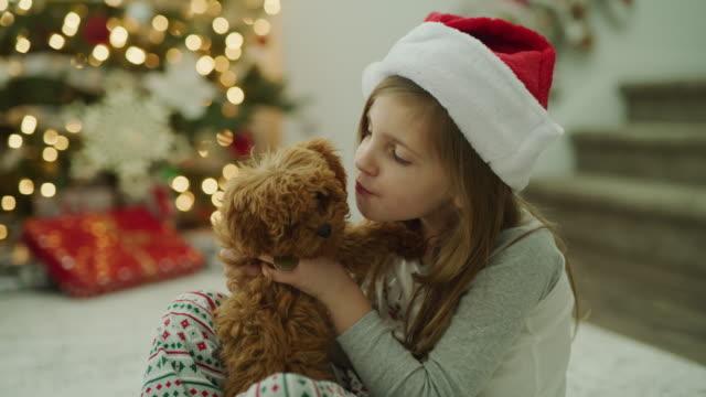 girl wearing santa hat hugging dog who is licking her face on christmas / vineyard, utah, united states - santa hat stock videos & royalty-free footage
