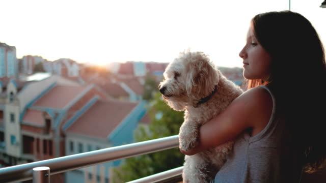 女の子、小型犬の美しい夕日をお楽しみいただける街 - 慰める点の映像素材/bロール