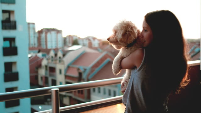 Girl with a small dog enjoying a beautiful sunset over city