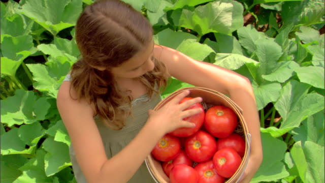 girl with basket of tomatoes - see other clips from this shoot 1425 stock videos and b-roll footage