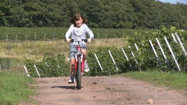 ms girl with bicycle in vineyards / wiltingen, rhineland-palatinate, germany                              - endast flickor bildbanksvideor och videomaterial från bakom kulisserna