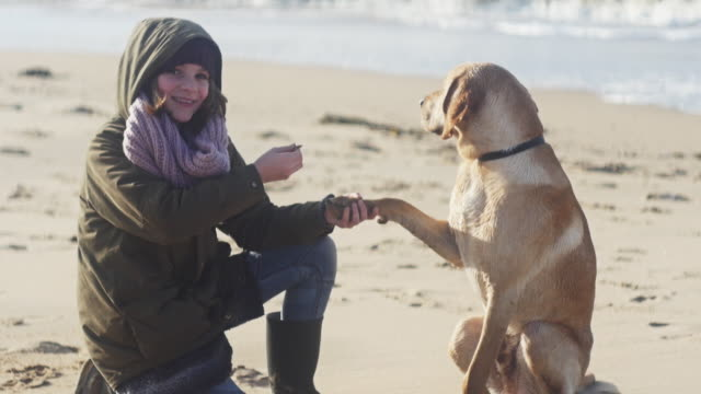 Girl with dog playing with shells on beach in winter, autumn