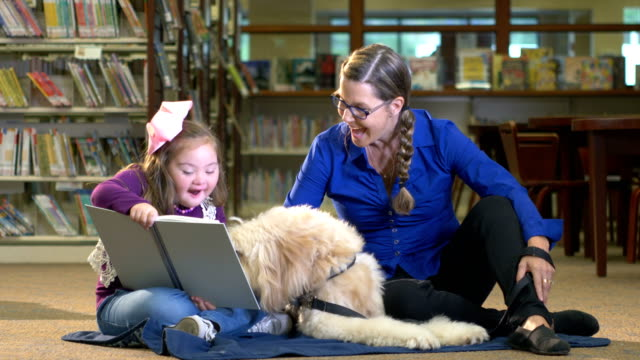 girl with down syndrome and therapy dog in library - reggere video stock e b–roll