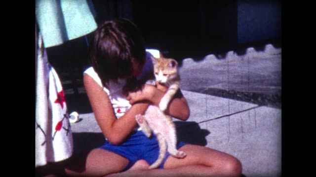1966 girl with frisky kitten - retro style stock videos & royalty-free footage