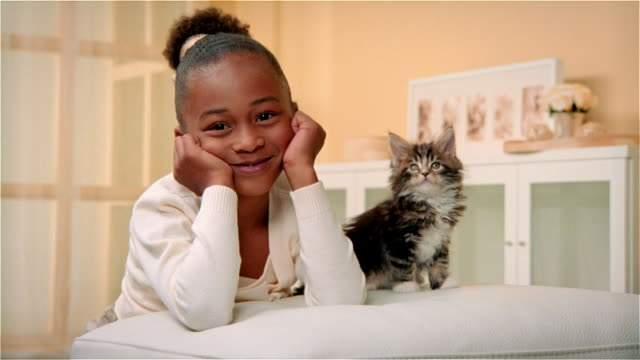 cu, zi, girl (6-7) with maine coon kitten, portrait - pets stock videos & royalty-free footage