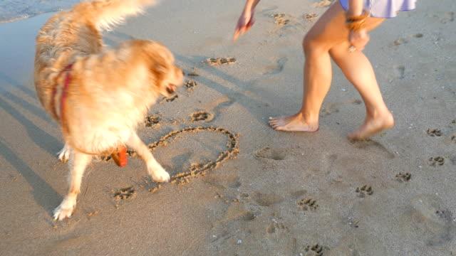 Mädchen schreiben den Wort Sommer am Strand sand und ihr golden Retriever ist das Spiel