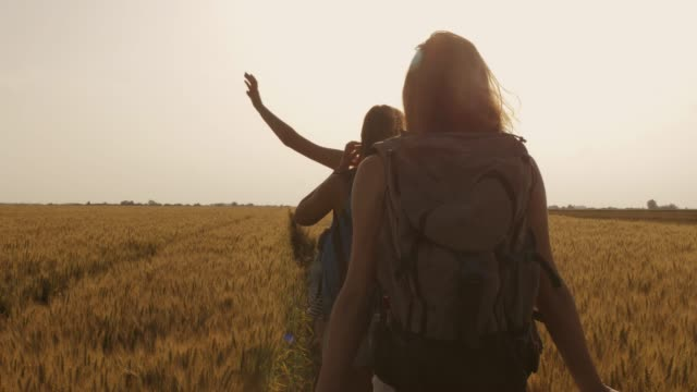 girlfriends walking through the field of barley to get to their camping location - rucksack stock videos & royalty-free footage