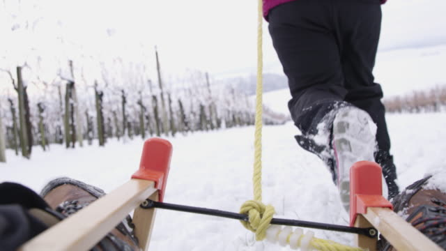 4k girls and dog playing, sledding in snowy vineyard, slow motion - winter sport stock videos & royalty-free footage