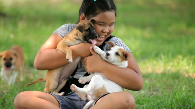 girls and puppy in the garden - overweight dog stock videos & royalty-free footage