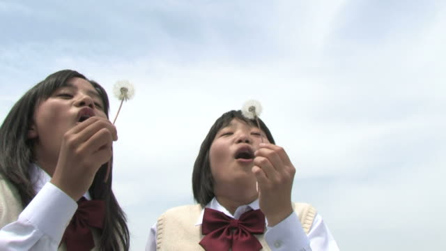 stockvideo's en b-roll-footage met girls blowing dandelion seeds - middelbare scholiere