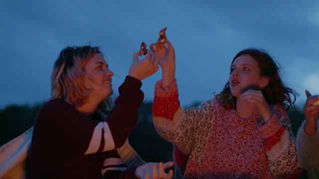 ms. girls cheers with smores and roast marshmallows over fire on camping trip. - teenagers only stock-videos und b-roll-filmmaterial