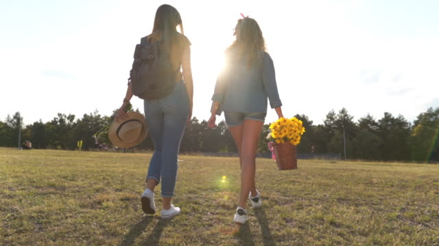 girls enjoying a walk down a meadow - picnic basket stock videos & royalty-free footage