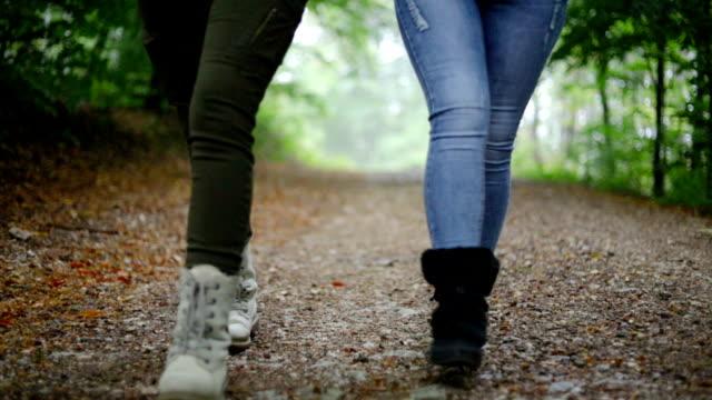 vídeos de stock e filmes b-roll de girls hiking in the forest - pegada