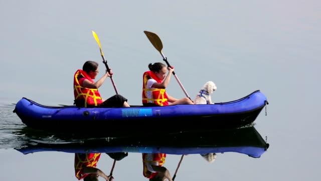 vídeos de stock e filmes b-roll de meninas remar caiaque em um lago com cão pet - remo