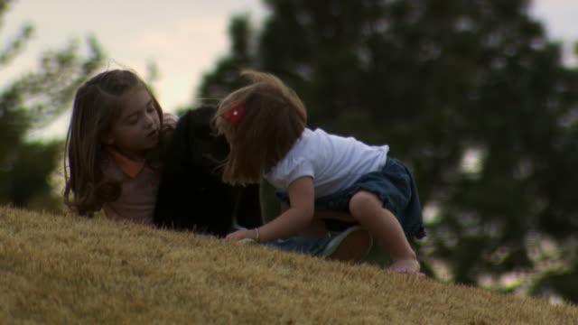 girls playing with puppy outdoors - andere clips dieser aufnahmen anzeigen 1166 stock-videos und b-roll-filmmaterial