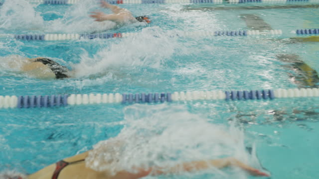 girls racing in swimming pool lanes / provo, utah, united states - females stock videos & royalty-free footage