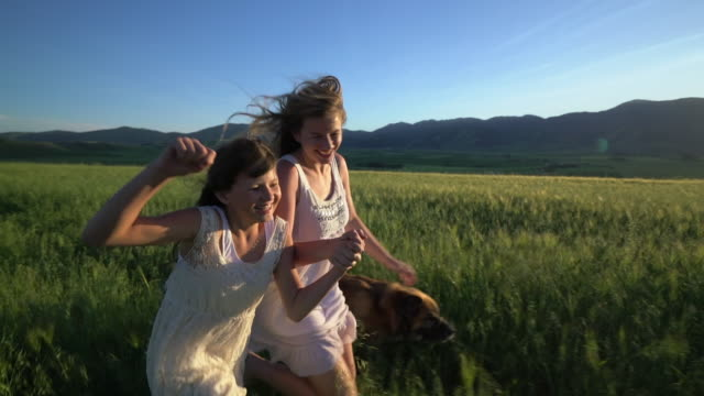 vidéos et rushes de ws ts sm girls running together through the grass. - petite fille
