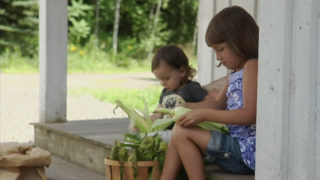 ms girls (4-5 years, 18-23 months) shucking corn on porch, bovina center, new york, usa - 18 23 months stock-videos und b-roll-filmmaterial