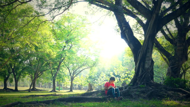 girls sits and reads a book under the tree on a sunny summer day - below stock videos & royalty-free footage