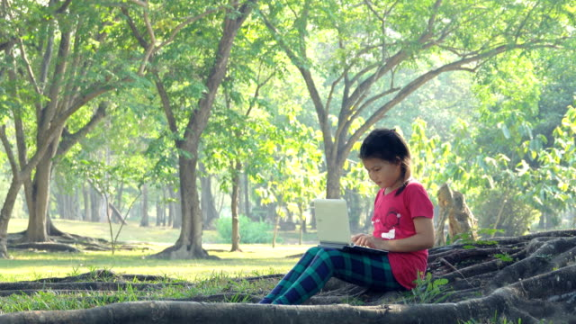 girls sits and use computer laptop under the tree on a sunny summer day - summer reading stock videos & royalty-free footage