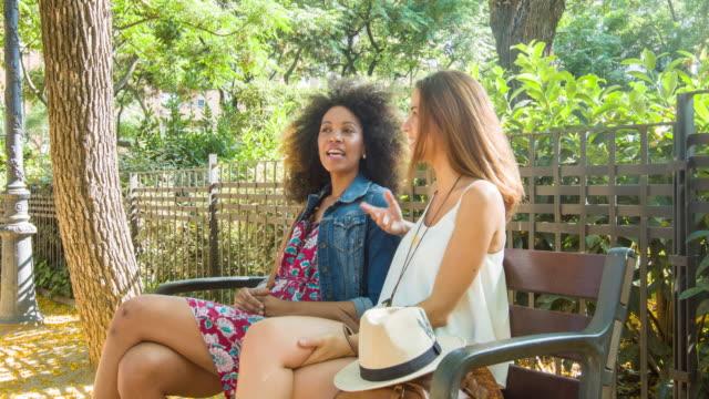 vídeos de stock e filmes b-roll de girls talking in the park - banco assento