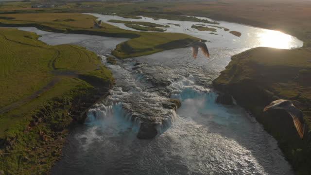 ægissíðufoss waterfall, iceland - rapid stock videos & royalty-free footage