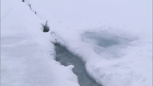 a glacial crevice in the north pole - crevice stock videos & royalty-free footage