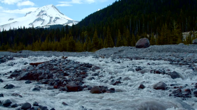 Glacial spring snowmelt stream White River in front of forest and mountain 2 Mt. Hood Spring Forest Oregon Cascade Mountains