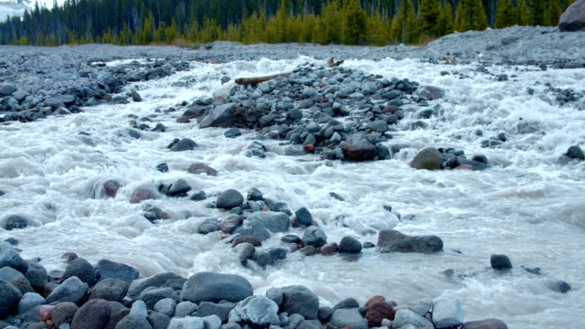 stockvideo's en b-roll-footage met glacial spring snowmelt stream white river in front of forest and mountain 3 mt. hood spring forest oregon cascade mountains - pacific crest trail