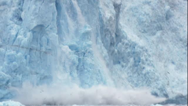 A glacier calves in Alaska.