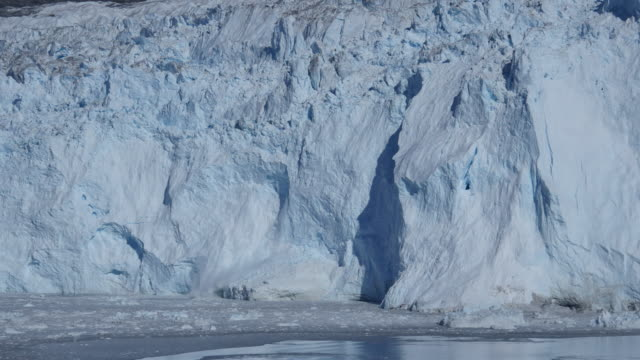 Glacier calving into the sea, seabirds escape