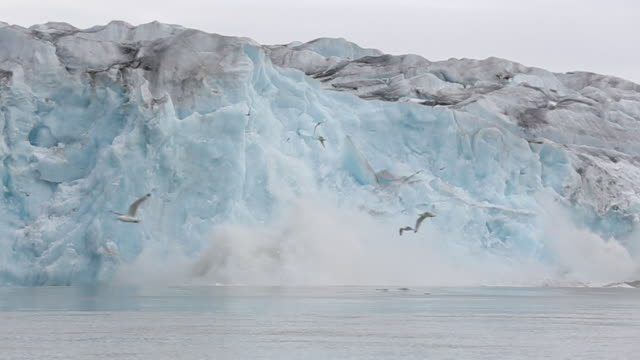 glacier calving - greenhouse effect stock videos and b-roll footage