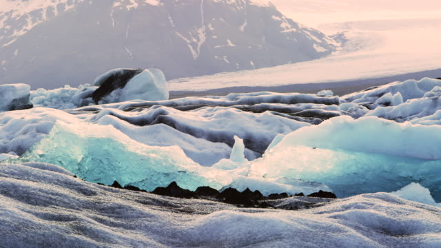 Glacier ice in Iceland with birds in real time