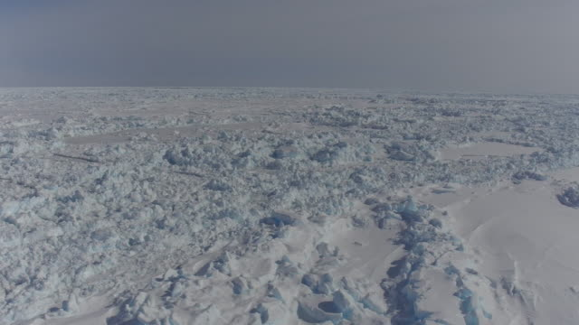 glacier in antarctica - south pole stock videos & royalty-free footage