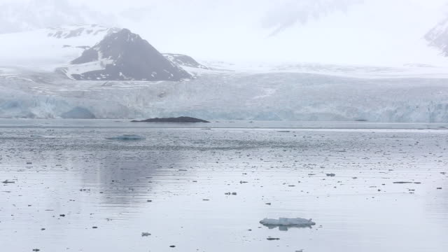 A glacier in northern Svalbard. All of Svalbards glaciers are retreating, even in the north of the archiapelago despite only being around 600 miles from the North Pole.