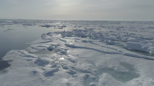 vidéos et rushes de glaciers on the sea surface, kaktovik, alaska, united states - ligne d'horizon au dessus de l'eau
